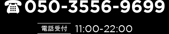 050-3556-9699